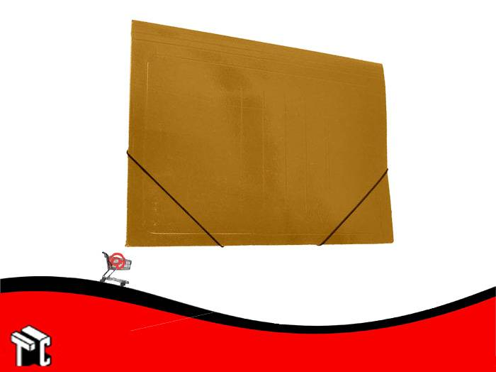 Carpeta 3 Solapas Congreso Con Elastico Kraft Plastificada